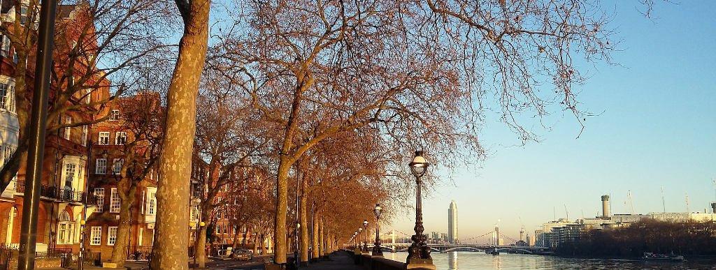West London Property Market Trends